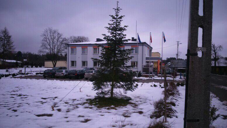 Photo of Drzewko szczęścia