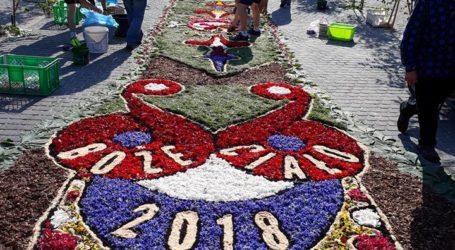 Wolborski dywan z kwiatów robi niesamowite wrażenie