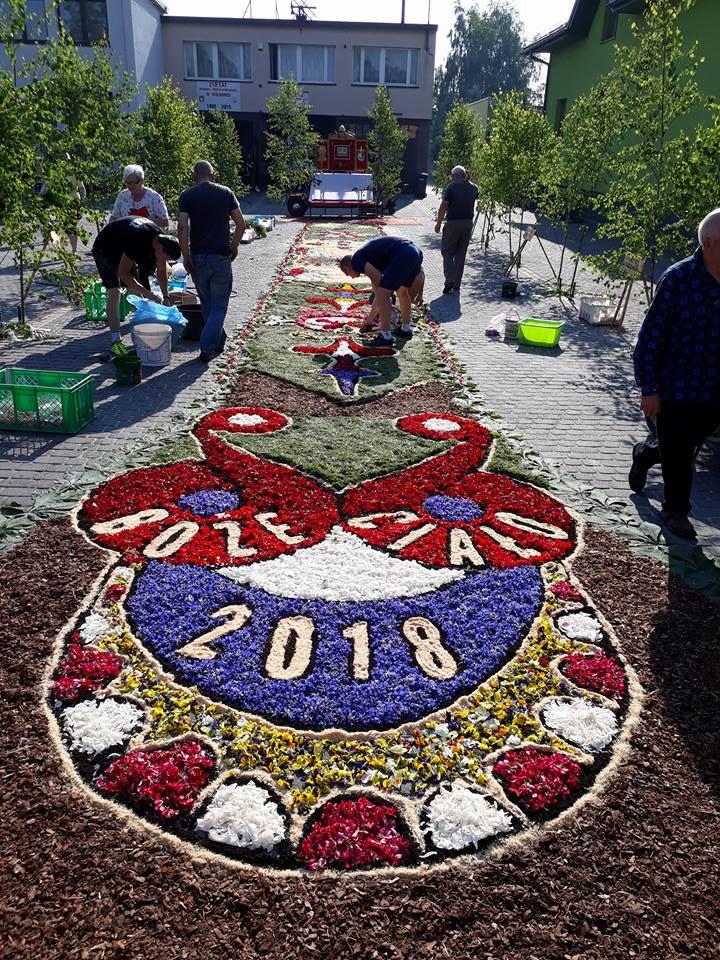 Photo of Wolborski dywan z kwiatów robi niesamowite wrażenie