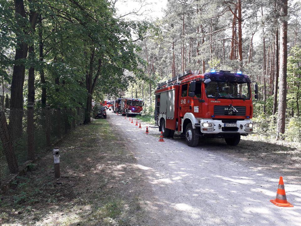 Photo of Strażacy ćwiczyli gaszenie pożaru w lesie