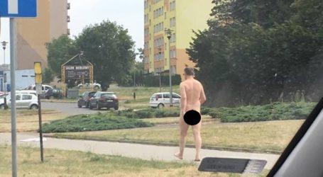 Stał goły na rogu… ulicy