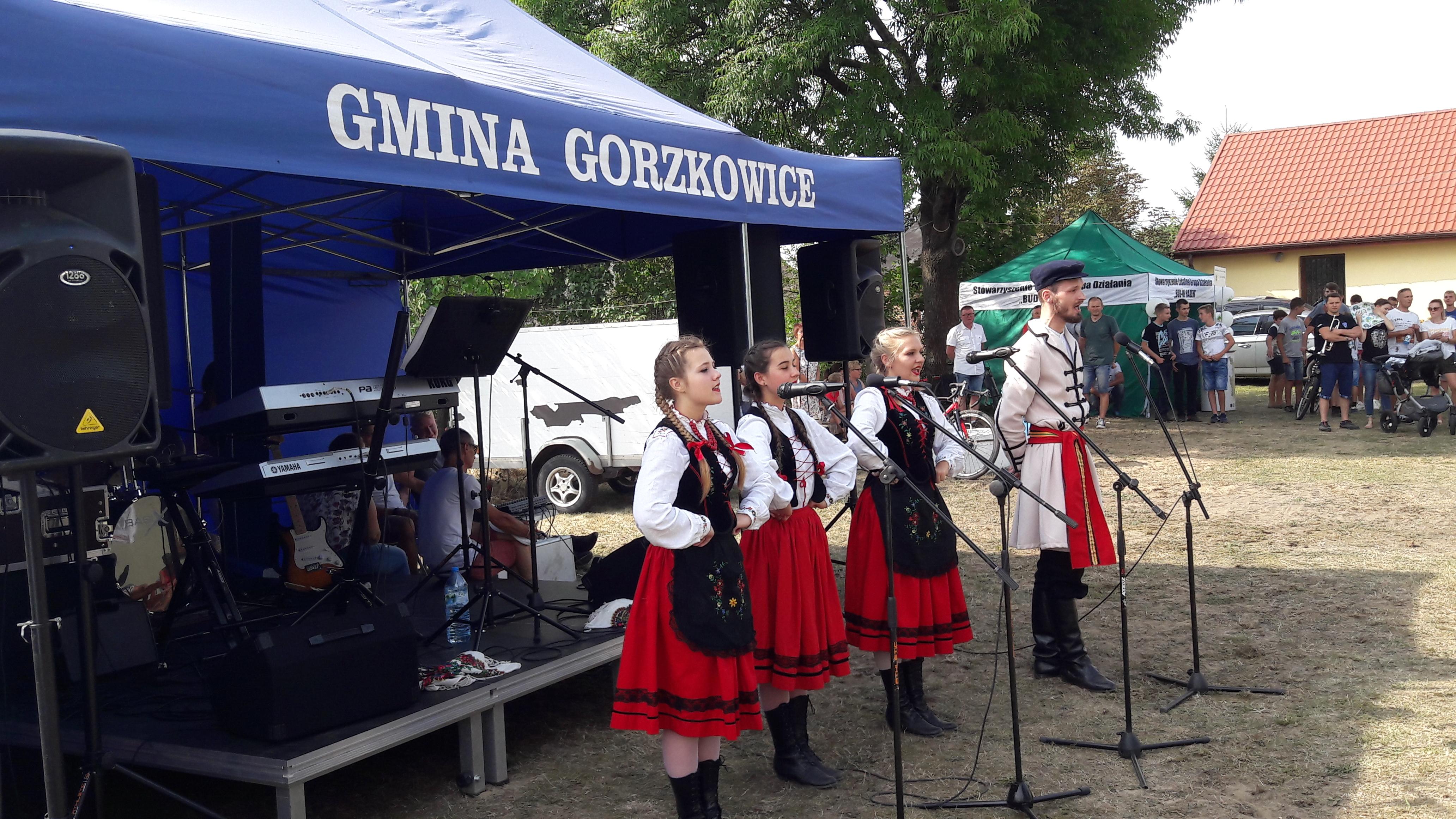 Photo of Piknik rodzinny w Krośnie w gm. Gorzkowice