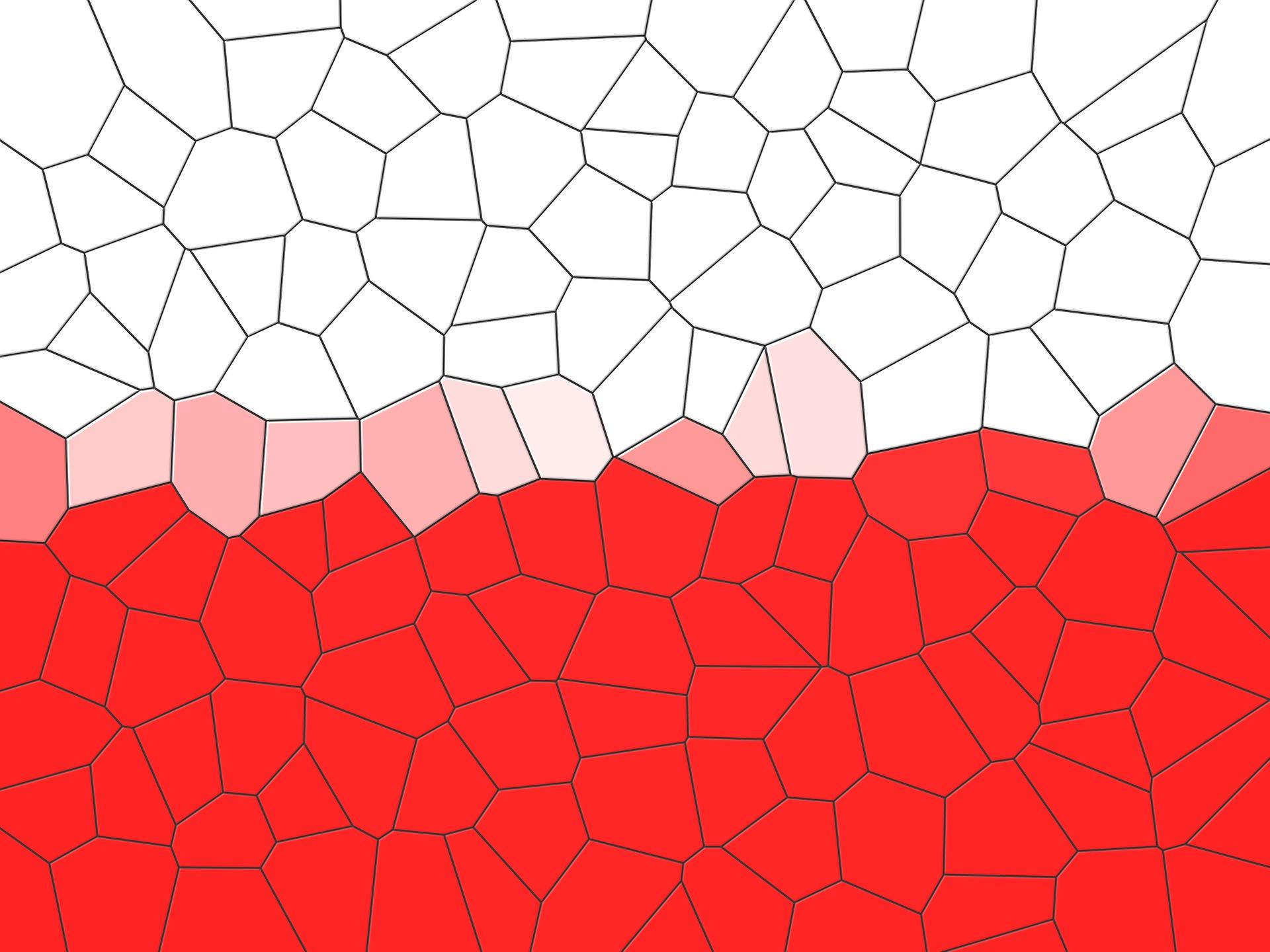 Photo of Przedwyborcza układanka na lewicy