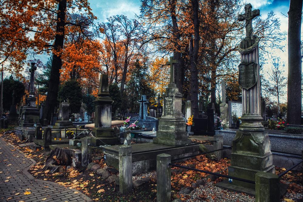 Photo of Stary cmentarz w Piotrkowie – FOTOREPORTAŻ