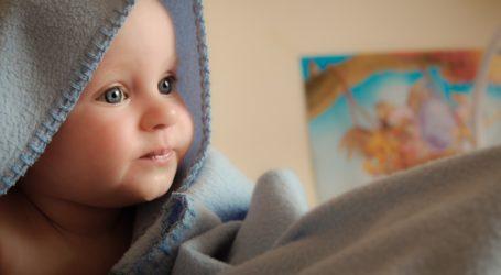 KANGUR na piotrkowskiej porodówce