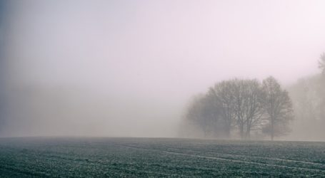 IMGW ostrzega o silnych mgłach