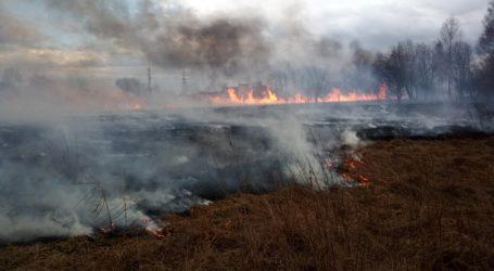Pożar lasu i traw