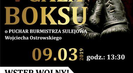 Gala boksu w Sulejowie