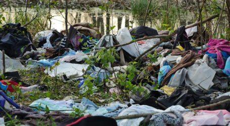 Stare ubrania porozrzucane w lesie wierzejskim