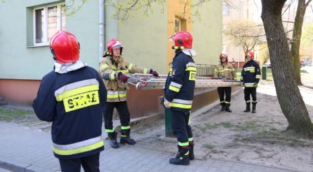 Strażacy uratowali kota