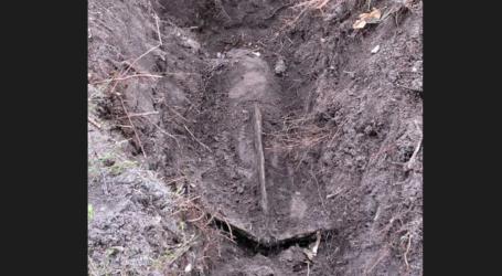 Ogromna bomba znaleziona w lesie