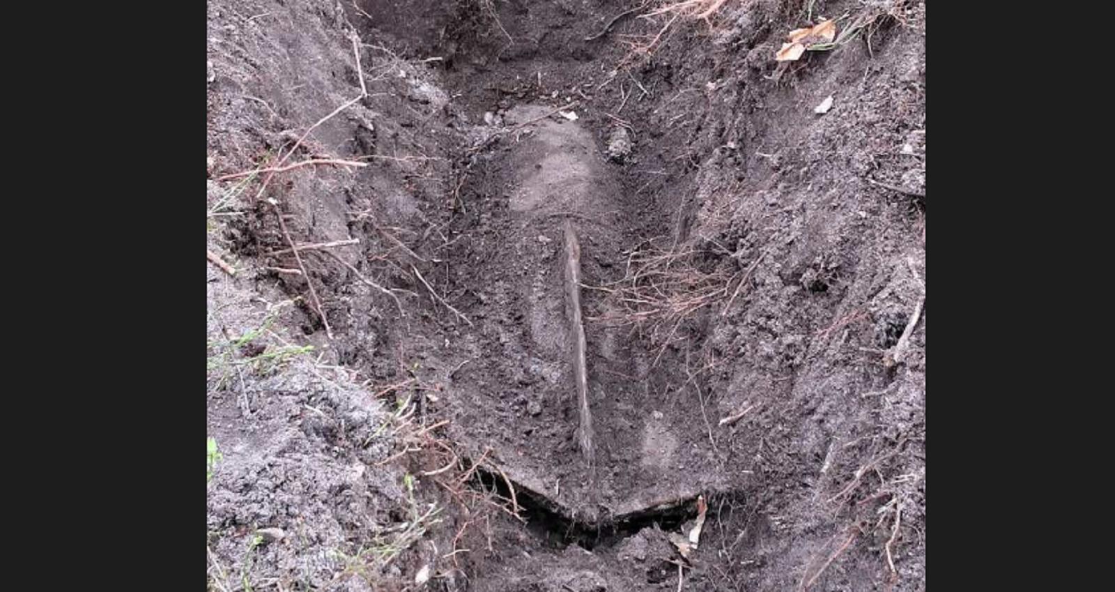 Photo of Ogromna bomba znaleziona w lesie