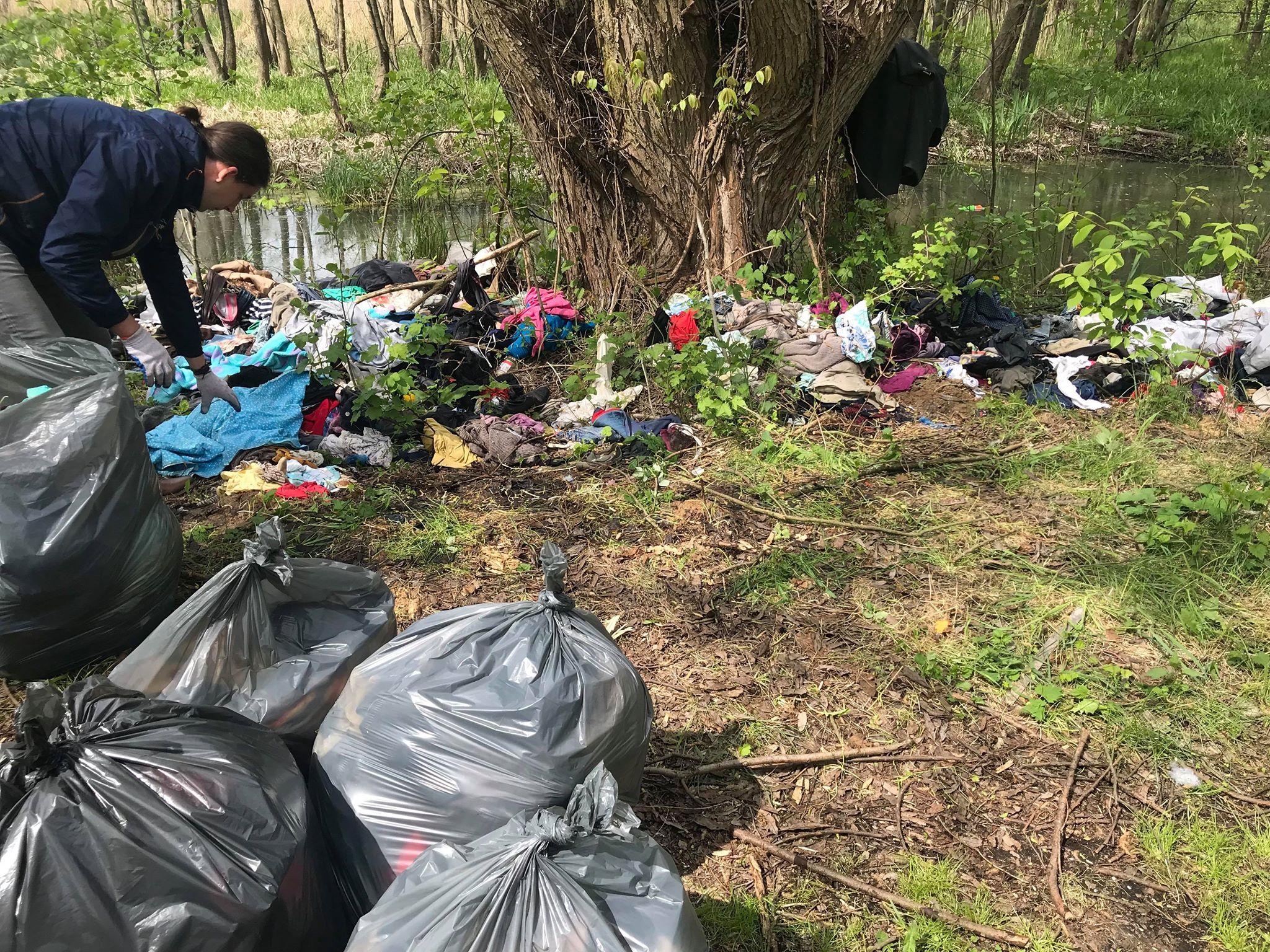 Photo of Tropem naszych publikacji: wolontariusze Vivy sprzątali las