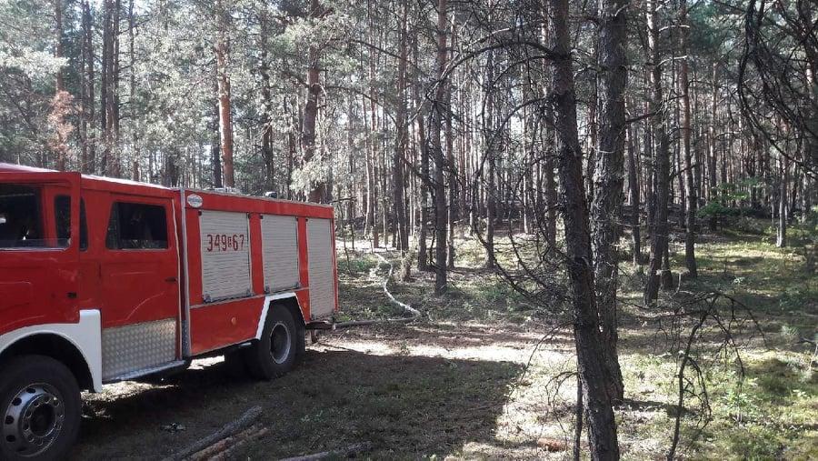 Photo of Płonął las w Mierzynie