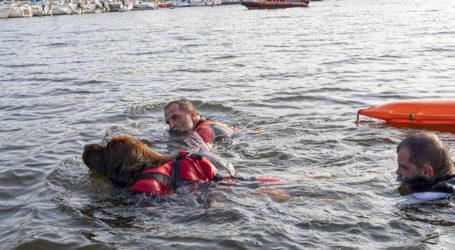 Na Zalewie Sulejowskim przewróciła się łódź. Trzy osoby uratowali wędkarze