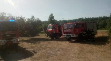 Pożar lasu w gminie Ręczno