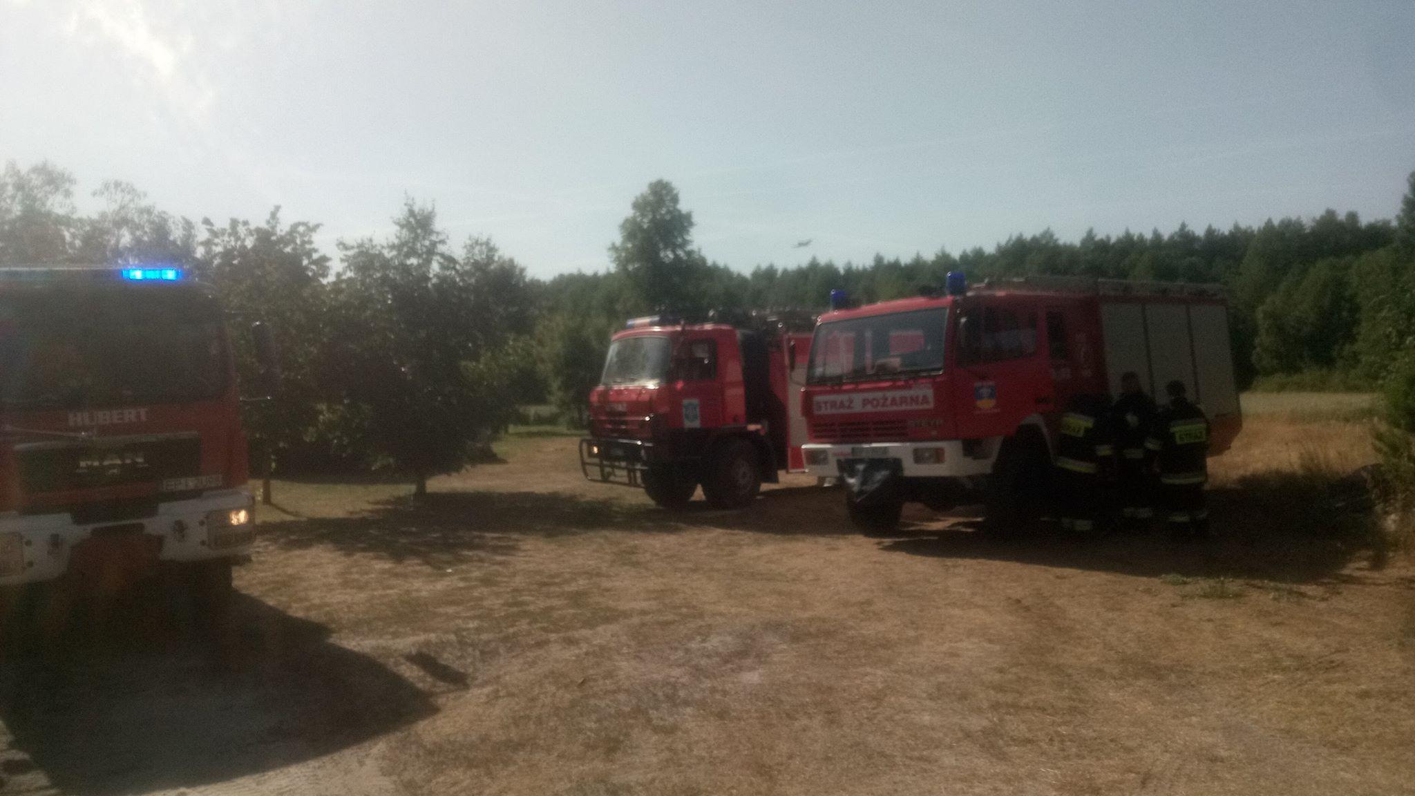 Photo of Pożar lasu w gminie Ręczno