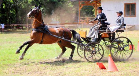 Zawody jeździeckie w Jeżowie