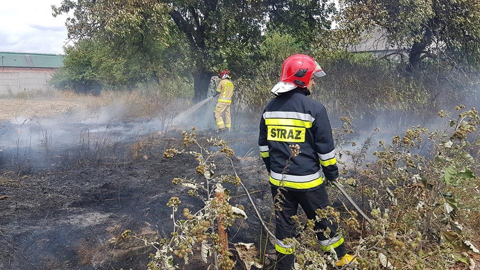 Photo of Plaga pożarów na polach powiatu?