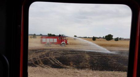 Dwa pożary zbóż niemal w tym samym czasie, w różnych częściach powiatu