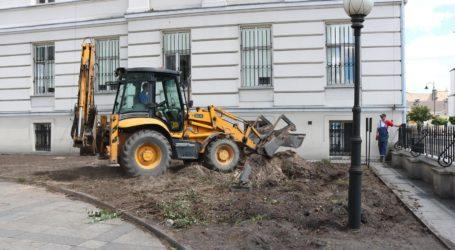 Wycinka drzew przed gmachem sądów. Będzie remont na dziedzińcu