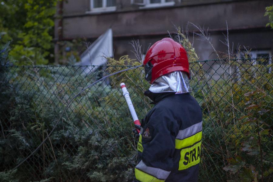 Photo of [AKTUALIZACJA] Niemal 50 interwencji strażaków – wichura w mieście i powiecie