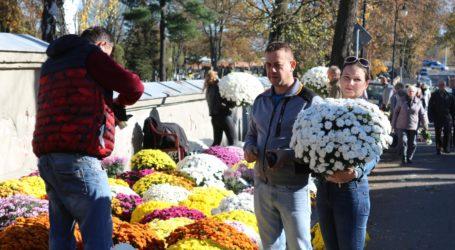 Organizacja ruchu w okolicach cmentarzy w Piotrkowie i regionie