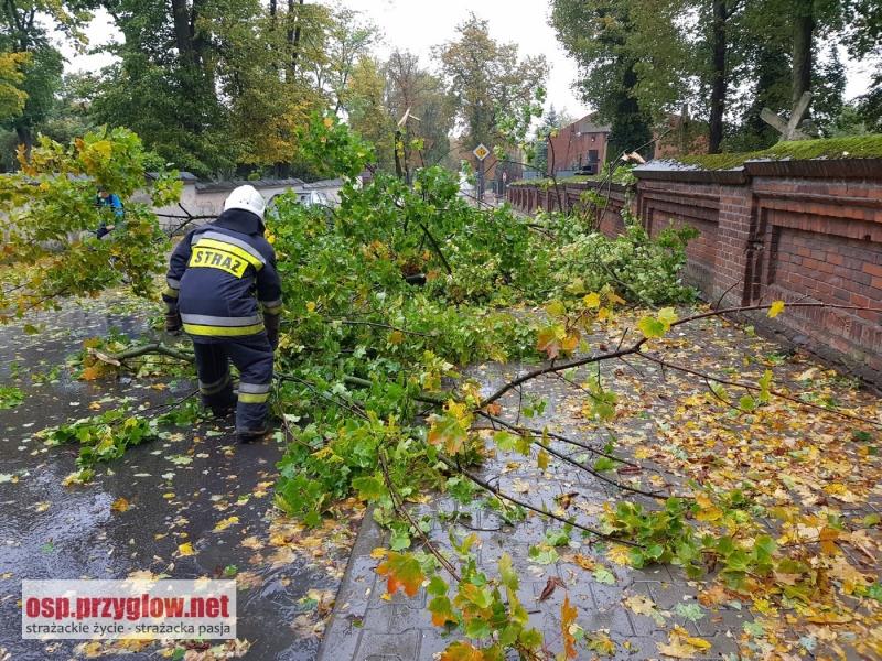 Photo of Straż pożarna i energetyka podsumowały straty po wichurze