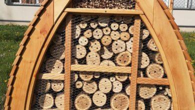 Photo of Domki dla pszczół murarek i innych owadów