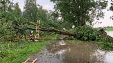 Photo of Piotrków i powiat po burzy: ponad 25 interwencji strażaków