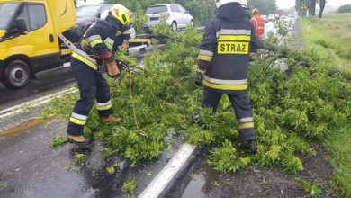 Photo of Złamany konar i zalana droga w Przygłowie