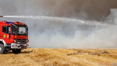 Photo of Spłonęło 17 hektarów rżyska