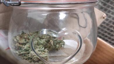 Photo of Marihuana w słoiku z serduszkiem