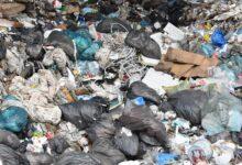 Photo of W Grabicy dbają o środowisko