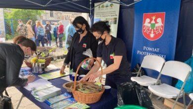 Photo of Finał zielonej, nakręconej akcji