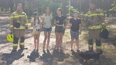 Photo of Dzieciaki uratowały las!