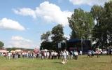 folk festiwal (69)
