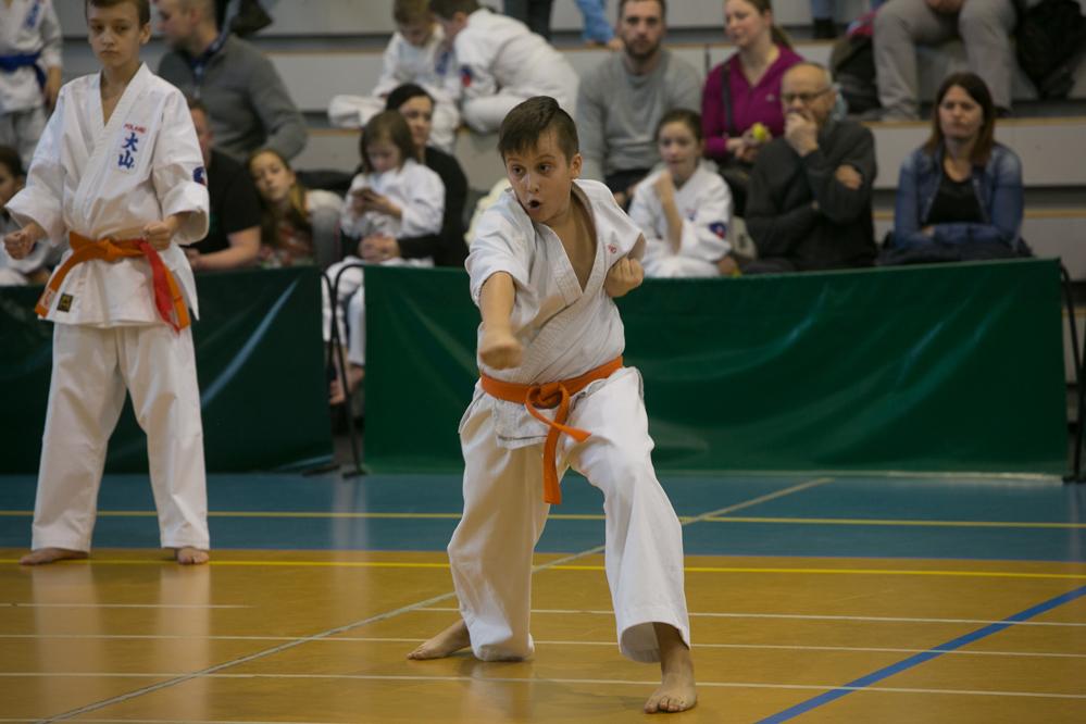 oyama karate (17)