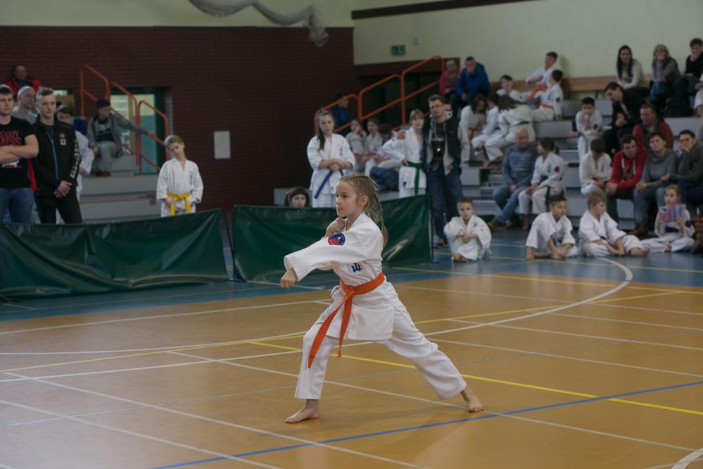 oyama karate (2)