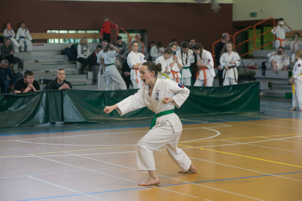 oyama karate (29)