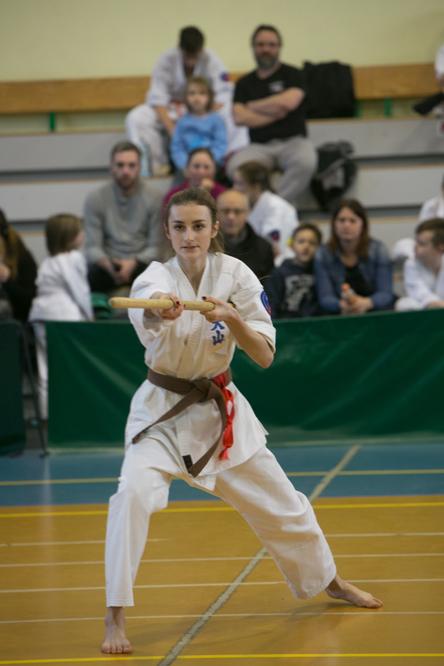 oyama karate (32)