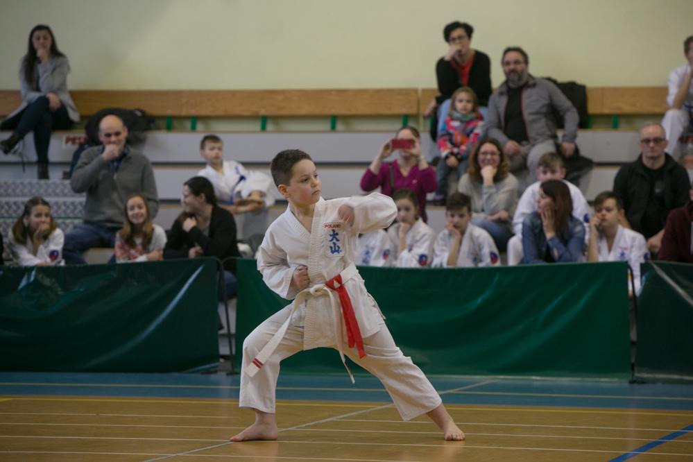 oyama karate (5)