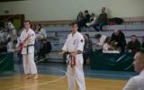 oyama karate (31)