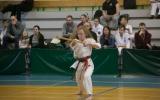 oyama karate (33)