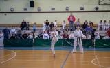 oyama karate (38)
